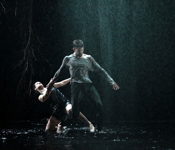 Delving Below the Surface of Dance